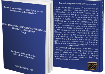 3D_cover_phrasebook_expressions_usuelles_douala